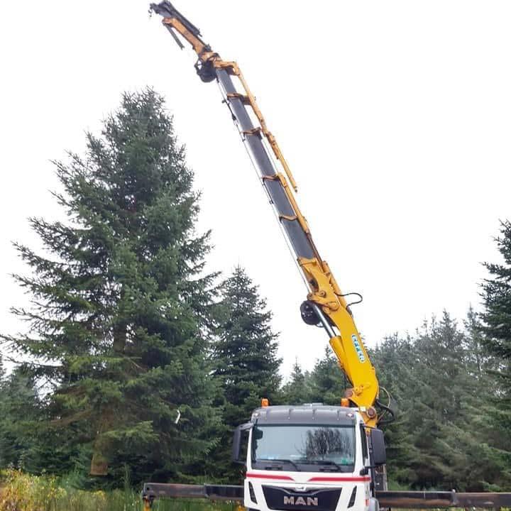 Juletræ til torvet i Esbjerg